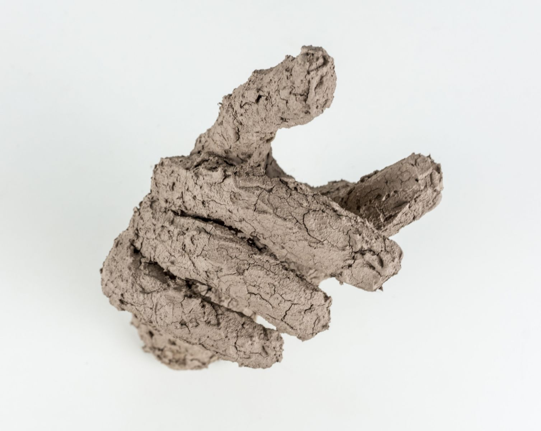 niko-Conatus-2